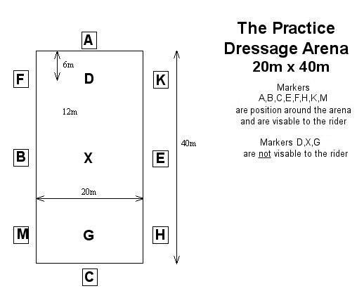 dressage layout. Black Bedroom Furniture Sets. Home Design Ideas